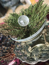 Crystal Filled Rose of Jericho - RJ13