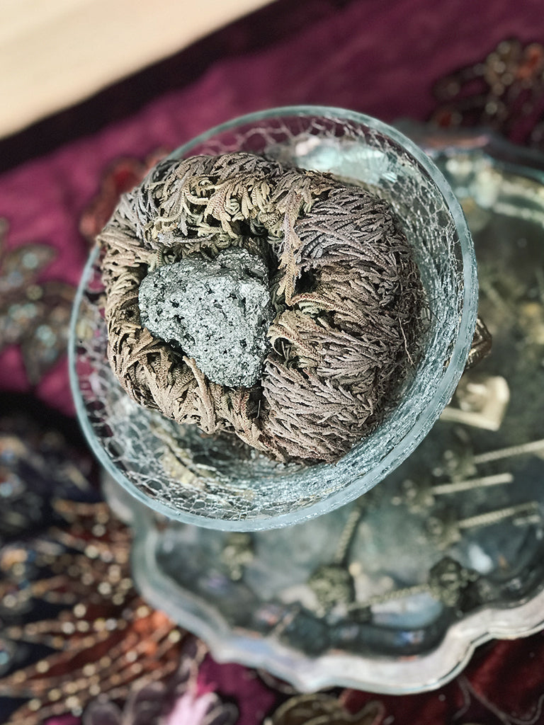 Crystal Filled Rose of Jericho - RJ17