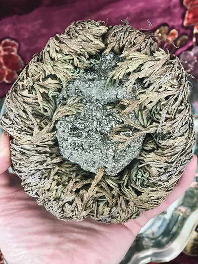 Crystal Filled Rose of Jericho - RJ23