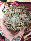 Crystal Filled Rose of Jericho - RJ28