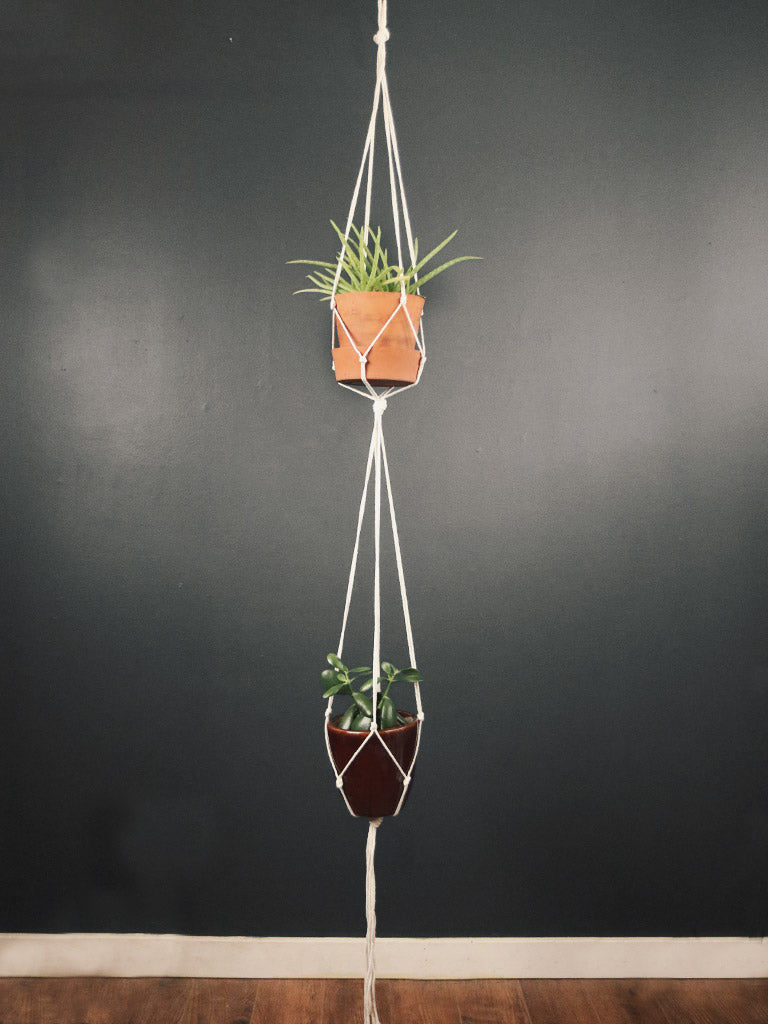 Double Duty Plant Hanger