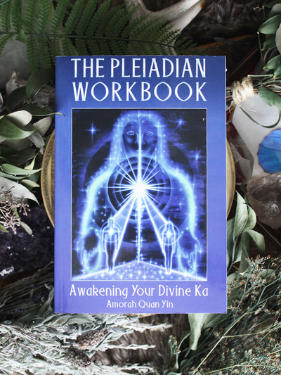 The Pleiadian Workbook