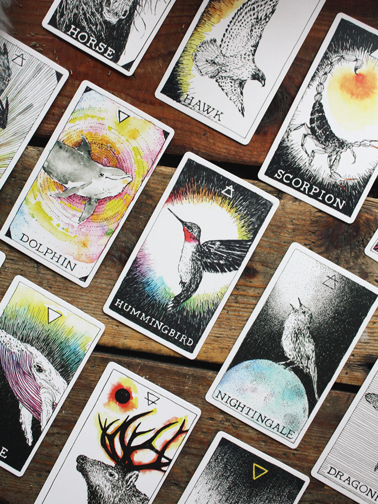 Wild Unknown Animal Spirit Deck and Guidebook