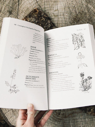 books cunningham's encyclopedia of magical herbs 2