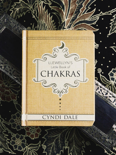 books llewellyn's little book of chakras 1