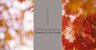 Trend Alert: 2019 Autumn/Winter Pantone Colours
