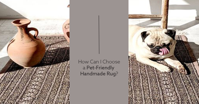 How to Choose a Pet-Friendly Rug?