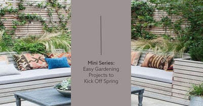 Mini Series: Easy Gardening Projects to Kick off Spring