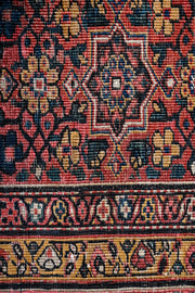 AINSLEE Antique Persian Farahan 535x355cm