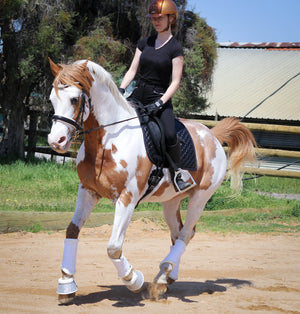 Woman on horse wearing black bamboo breeches