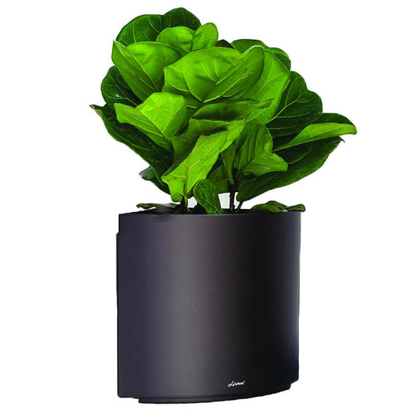 Leizisure Automatic Water Absorbing Flower Pot Living Room Office Triangle Combined Lazy Flower Pot Plastic