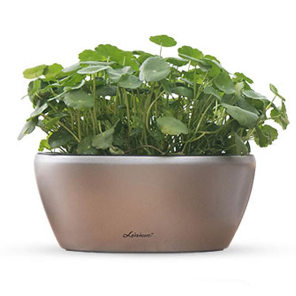 Leizisure Automatic water absorbing flower pot simple square round succulent plant imitation ceramic balcony large caliber plastic lazy flower pot
