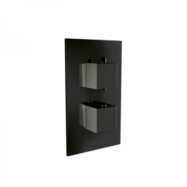 Black Twin Square Concealed Valve