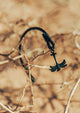 Eclipse - Season two Palm anchor bracelet with black leather. Out in the nature.