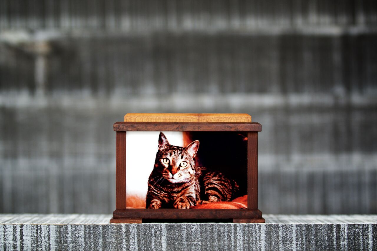 Wooden Cat cremation urn