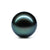 Black South Sea Tahitian Loose Pearl Wholesale 8-15mm for Jewelry Making DIY China Factory B9LPTA1001