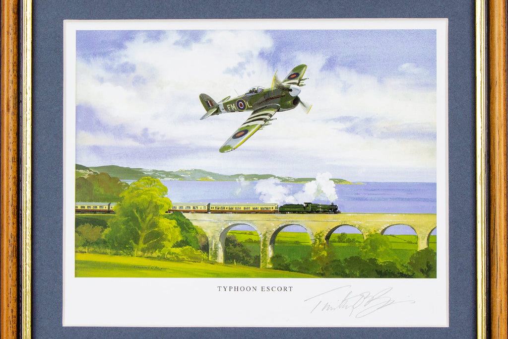 The Typhoon Signed Framed Print – Collectology