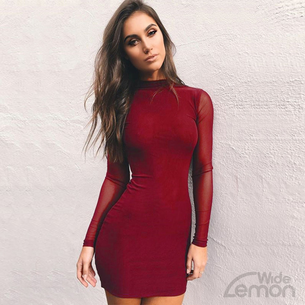 Long Sleeve Mesh Skinny Short Dress