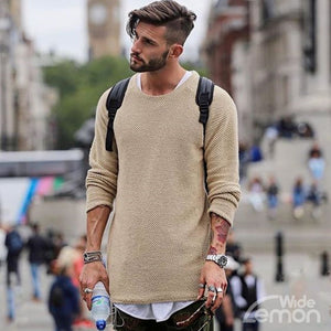 Brown Basic Neck Long Sleeve Knitwear