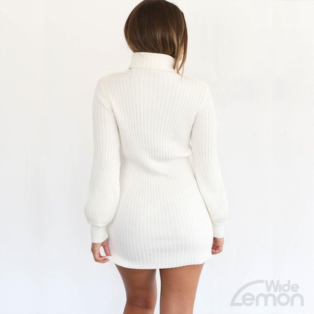 BLANC Knitted Turtleneck Dress