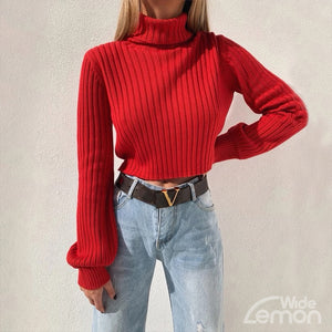 ROSU Turtleneck Sweater