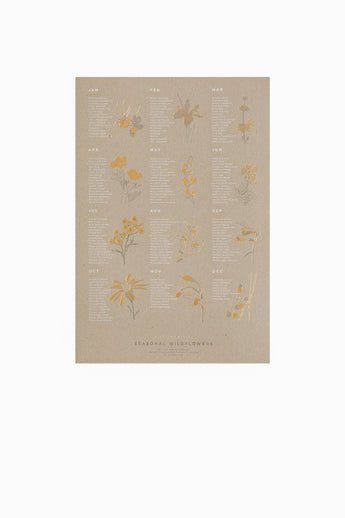 Native Wildflowers Poster (Chipboard)