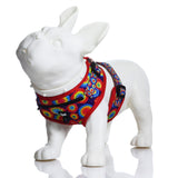 HeadyPet™ Harness - Tie Dye