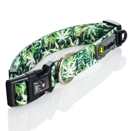Pot leaf dog collar - Cannacamo