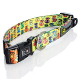 Headypet Collar - Moneybag Collector