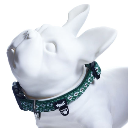 Headypet Collar V2 - Argyle