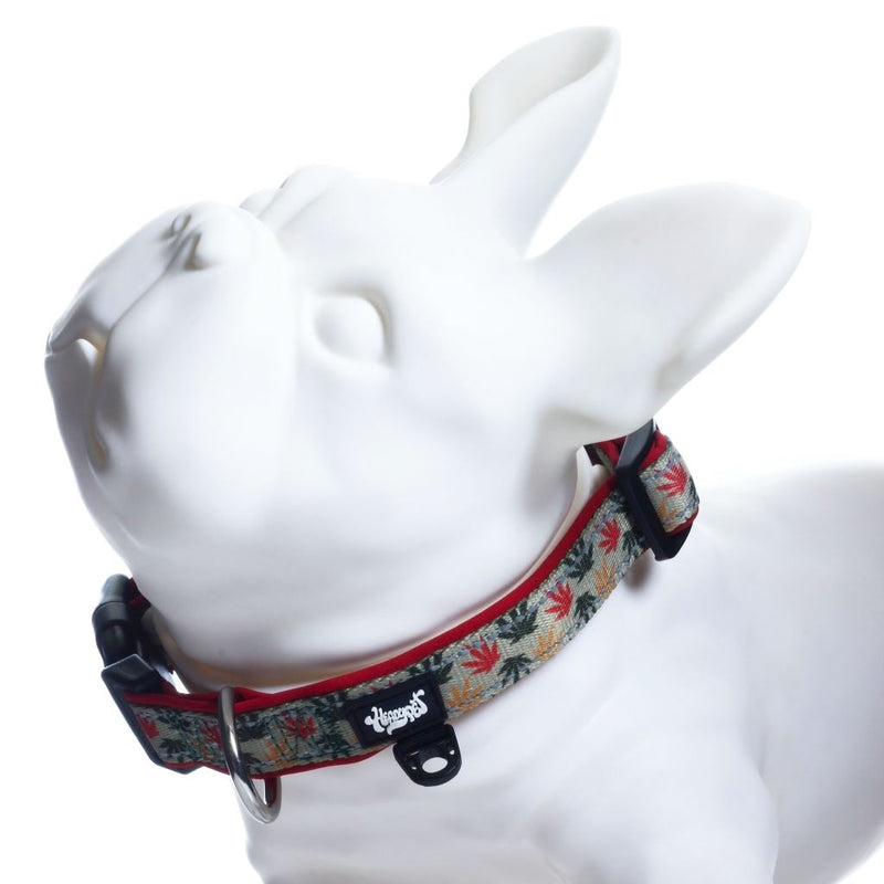 Marijuana dog collar V2 - Rasta