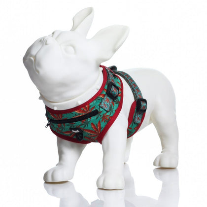 Headypet Harness - Caribbean