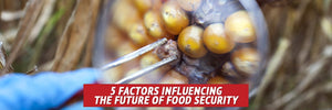 5 Factors Influencing the Future of Food Security