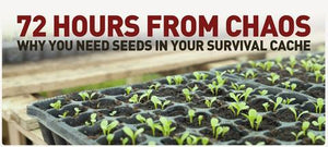 72 Hours From Chaos - Why You Need Seeds