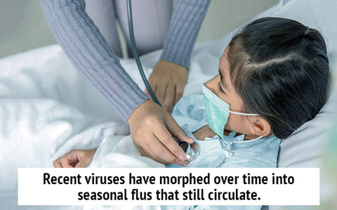 Recent viruses have morphed over time into seasonal flus that still circulate.