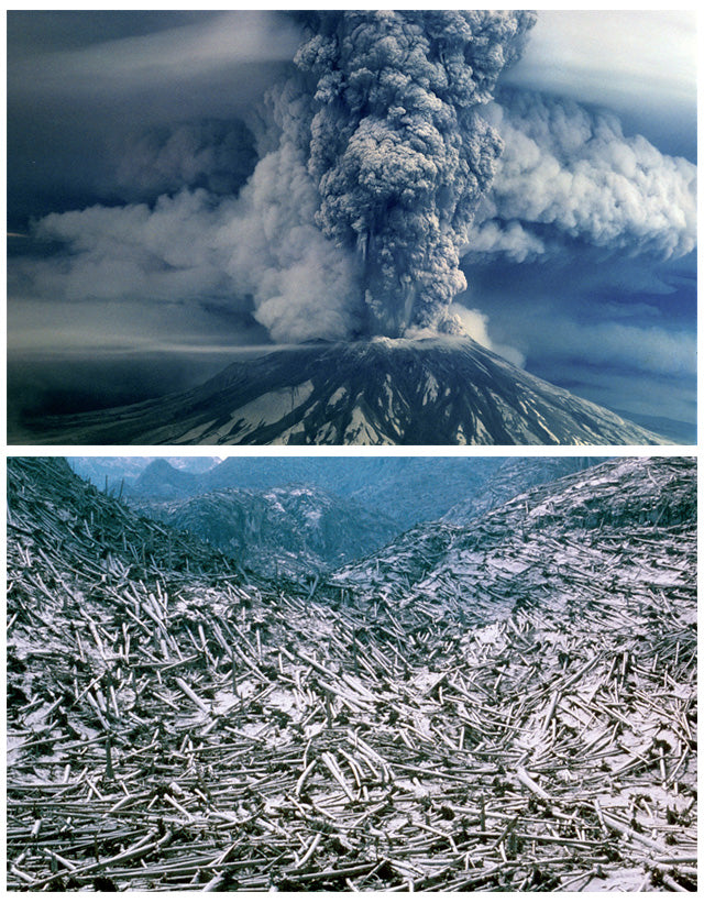 The Eruption of Mount St. Helens in 1980
