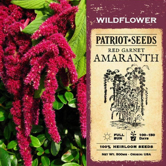 Red Garnet Amaranth Herb Seeds (500mg) - My Patriot Supply