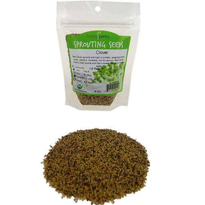 Organic Red Clover Sprouting Seeds (4 ounces) - My Patriot Supply