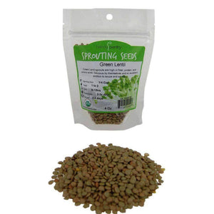 Organic Green Lentil Sprouting Seeds (4 ounces) - My Patriot Supply