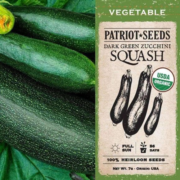 Organic Dark Green Zucchini Summer Squash Seeds (7g) - My Patriot Supply