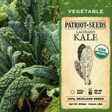 Organic Lacinato Kale Seeds (500mg) - My Patriot Supply