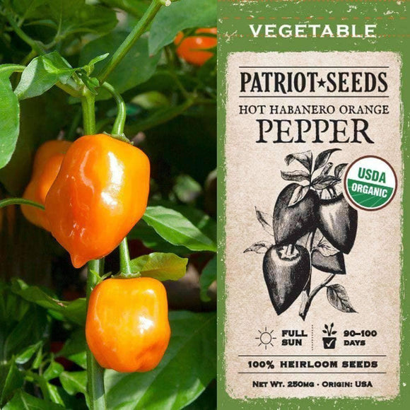 Organic Habanero Hot Orange Pepper Seeds (250mg) - My Patriot Supply