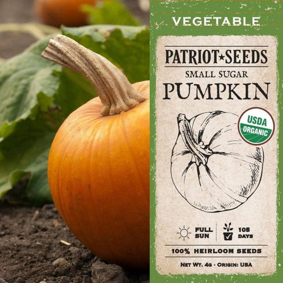 Organic Small Sugar Pumpkin Seeds (4g) - My Patriot Supply