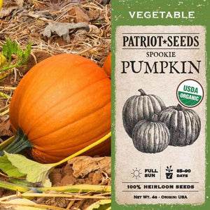 Organic Spookie Pumpkin Seeds (4g) - My Patriot Supply