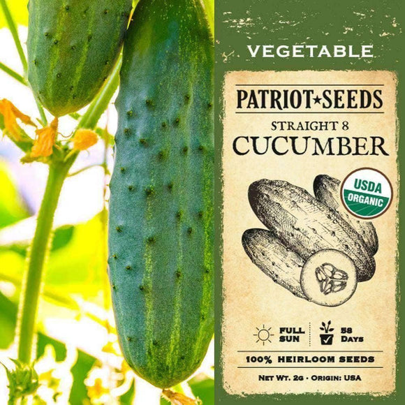 Organic Straight Eight Cucumber Seeds (2g) - My Patriot Supply