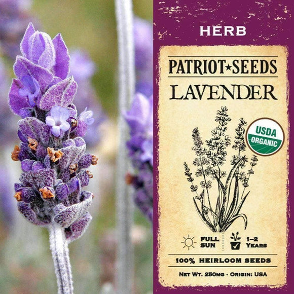 Organic Lavender Herb Seeds (250mg) - My Patriot Supply