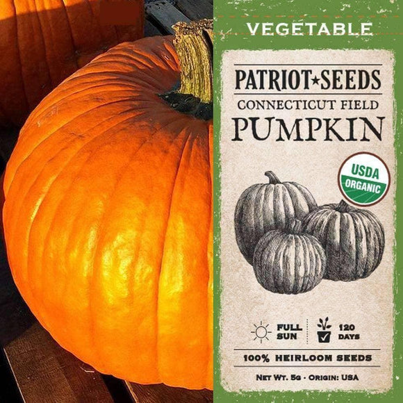 Organic Connecticut Field Pumpkin Seeds (5g) - My Patriot Supply