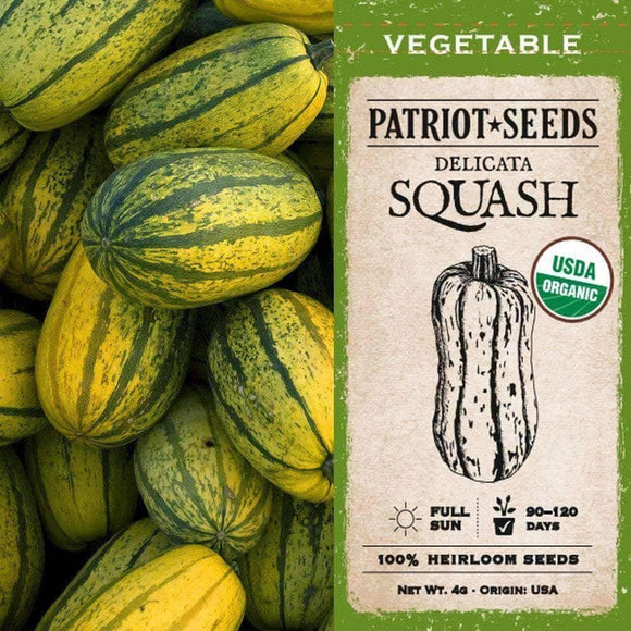 Organic Delicata Winter Squash Seeds (4g) - My Patriot Supply