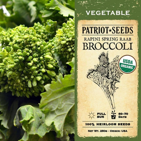 Organic Rapinni Spring Raab  Broccoli Seeds (250mg)