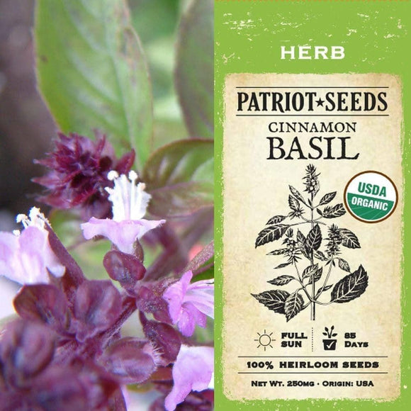 Organic Cinnamon Basil Herb Seeds (250mg) - My Patriot Supply